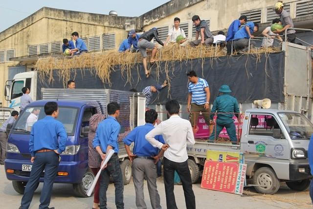 Người dân xứ Nghệ mua dưa ủng hộ nông dân Quảng Ngãi ảnh 3