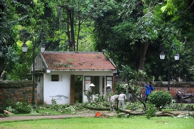 Người Hà Nội tất bật dọn dẹp sau trận mưa dông ảnh 10