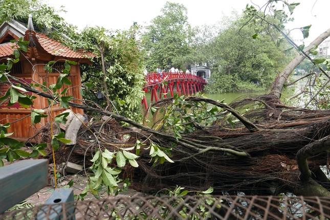 Người Hà Nội tất bật dọn dẹp sau trận mưa dông ảnh 1