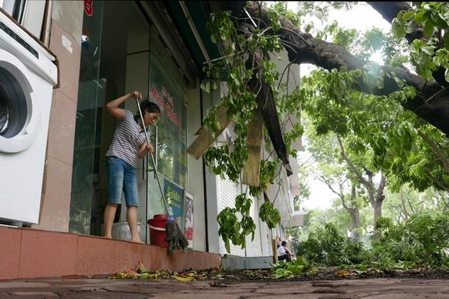 Người Hà Nội tất bật dọn dẹp sau trận mưa dông ảnh 4