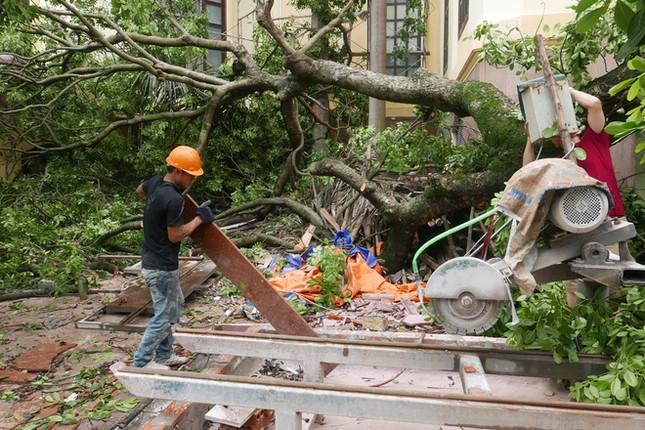 Người Hà Nội tất bật dọn dẹp sau trận mưa dông ảnh 8