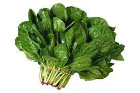 Những thực phẩm đặc biệt tốt cho phụ nữ tuổi mãn kinh ảnh 2