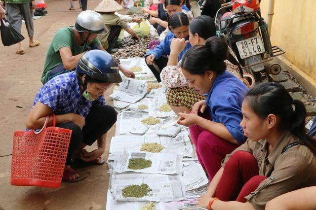 """Chợ quê bán """"đặc sản"""" côn trùng ở Hòa Bình nằm ở huyện nào?"""