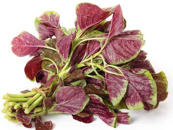 Những thực phẩm cung cấp canxi tự nhiên cực tốt, ngăn chặn loãng xương ảnh 6