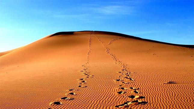 Quốc gia bị sa mạc bao phủ 90% diện tích lãnh thổ thuộc khu vực nào?