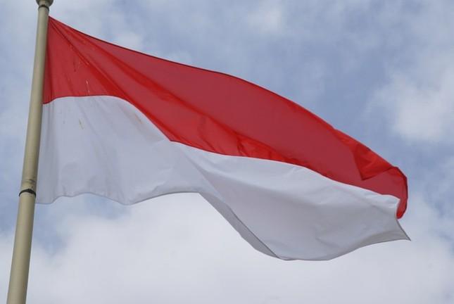 Quốc kỳ Monaco giống hệt quốc kỳ của nước nào?
