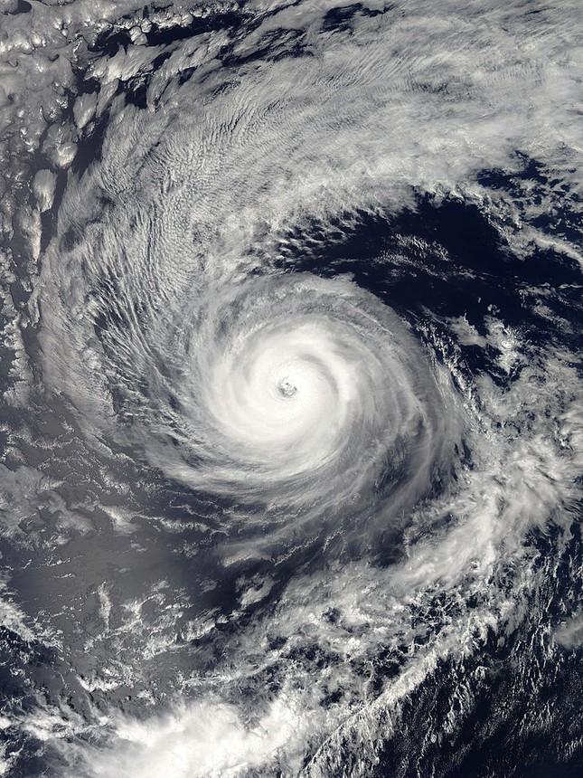 """Cơn bão có tốc độ gió """"giật"""" mạnh nhất với sức gió giật tới 408km/h?"""