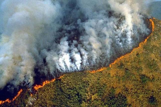 Ước tính, có bao nhiêu vụ cháy rừng đã được ghi nhận ở Brazil trong 8 tháng đầu năm 2019?