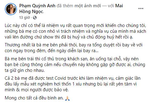 Sao Việt đồng loạt hủy show chung tay chống dịch ảnh 1