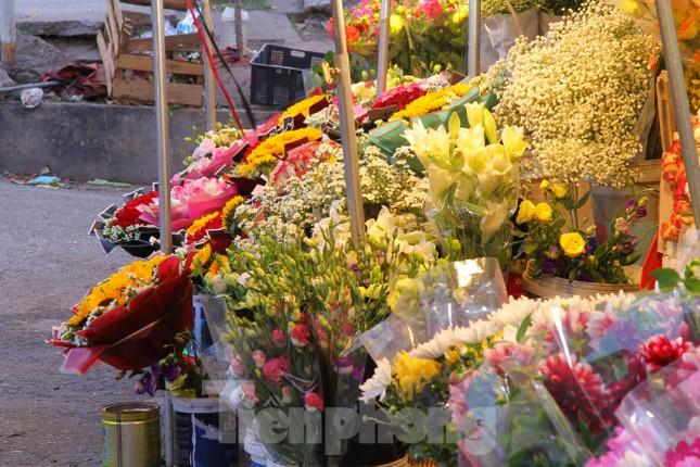 Hoa tươi sau Tết ở Hà Nội rớt giá thê thảm chưa từng thấy ảnh 3