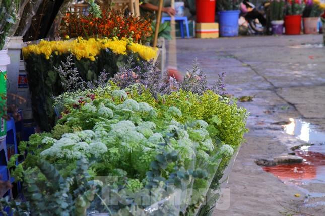 Hoa tươi sau Tết ở Hà Nội rớt giá thê thảm chưa từng thấy ảnh 6