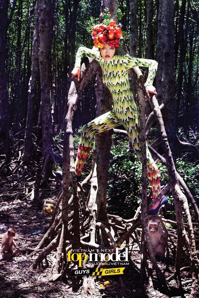 Thí sinh Next Top Model sợ hãi khi chụp ảnh với khỉ ảnh 7