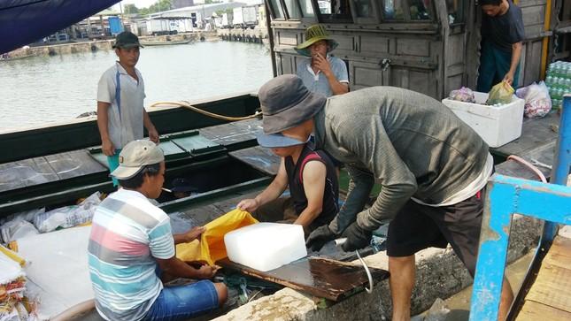 Huế tấp nập điểm bán hải sản sạch, sôi động cảng cá ảnh 3
