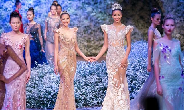 Hoa hậu Pháp duyên dáng trên sàn catwalk Việt ảnh 2