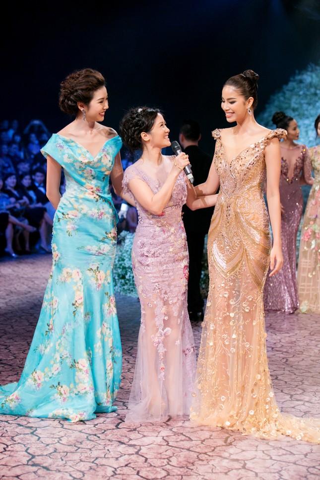 Hoa hậu Pháp duyên dáng trên sàn catwalk Việt ảnh 3