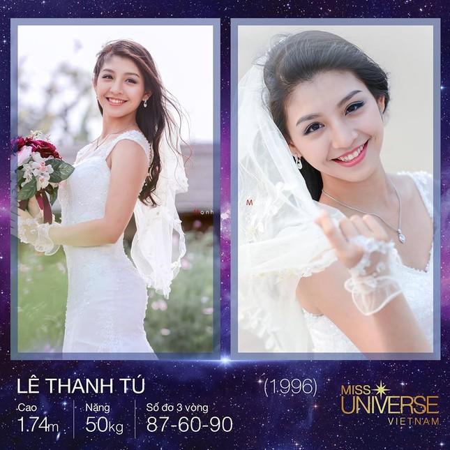 Hoàng Thuỳ sẽ cạnh tranh với những gương mặt nào tại Hoa hậu Hoàn vũ 2017 ảnh 7