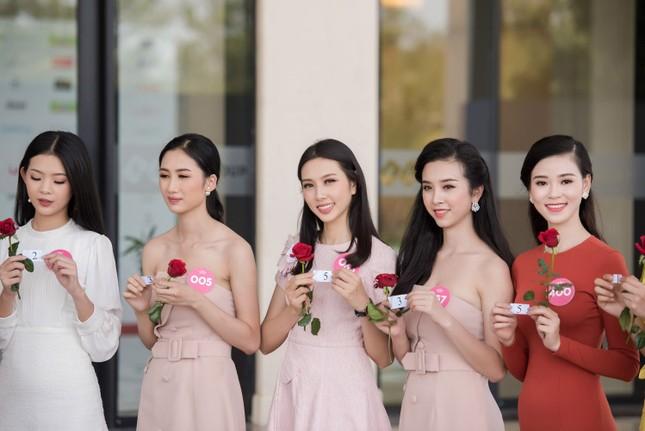 4 nhóm dự án nhân ái của 19 thí sinh lọt chung kết Hoa hậu Việt Nam ảnh 1