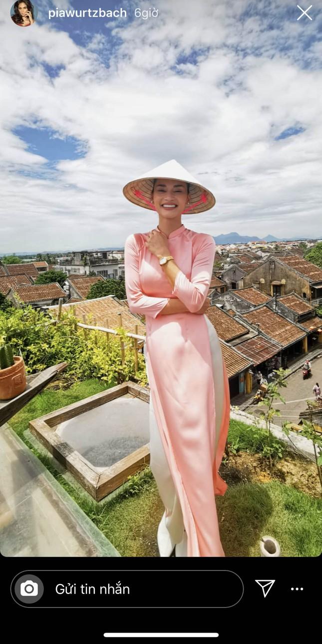 Hoa hậu Hoàn vũ Pia Wurtzbach mặc áo dài, đội nón lá ăn bánh mỳ ở Hội An ảnh 1