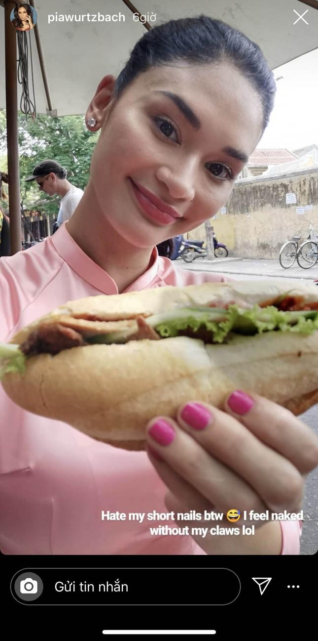Hoa hậu Hoàn vũ Pia Wurtzbach mặc áo dài, đội nón lá ăn bánh mỳ ở Hội An ảnh 4