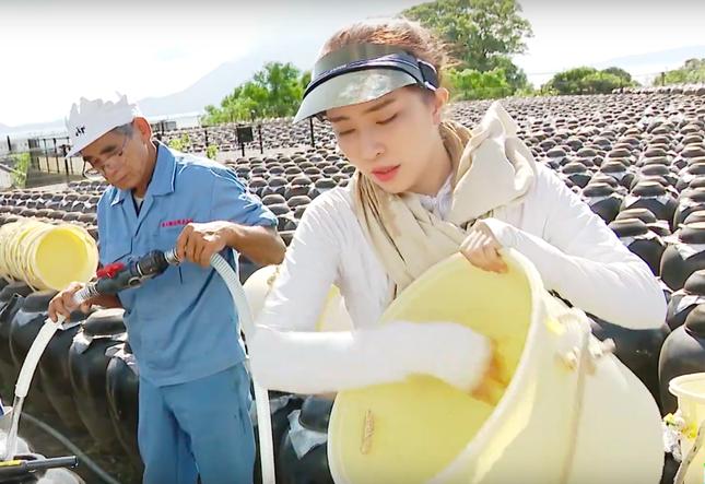 Việt Anh tái xuất sau thẩm mỹ, ôm Quỳnh Nga tình tứ trên truyền hình ảnh 2