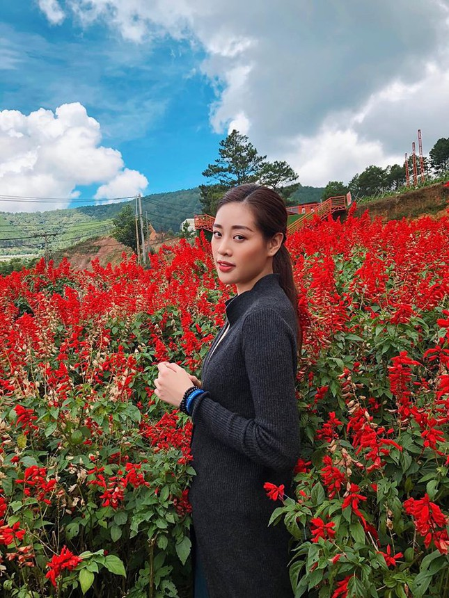 Hoa hậu Diễm Hương diện váy xẻ ngực sâu nóng bỏng ảnh 15