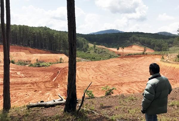 Lâm Đồng: Mặc lệnh cấm, nhiều phương tiện vẫn san bạt núi đồi ảnh 2