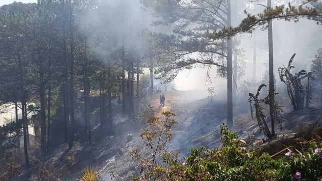 Liên tiếp 2 vụ cháy nhà và xưởng gỗ dưới tán rừng thông Đà Lạt ảnh 2