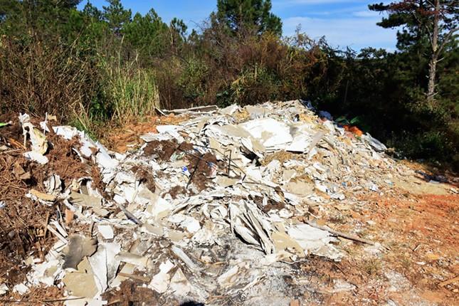Ùn ùn tuồn rác thải vào rừng thông Đà Lạt ảnh 1