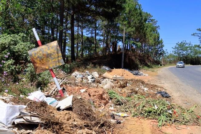 Ùn ùn tuồn rác thải vào rừng thông Đà Lạt ảnh 3
