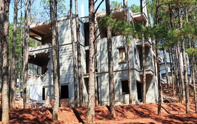 Cưỡng chế khu nghỉ dưỡng 4 sao phá rừng ở Đà Lạt ảnh 1