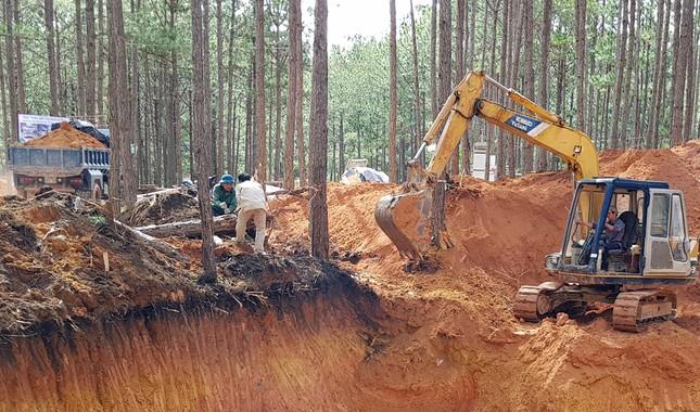 Cưỡng chế khu nghỉ dưỡng 4 sao phá rừng ở Đà Lạt ảnh 4