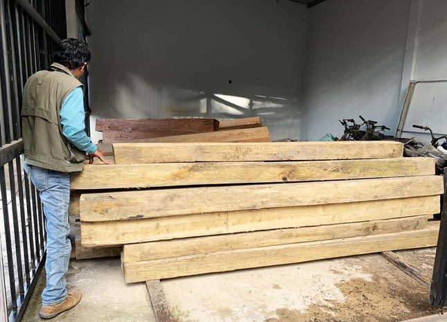 Rừng nguyên sinh bị tàn phá, gỗ lậu lọt vào nhà... Tổ trưởng bảo vệ rừng ảnh 5