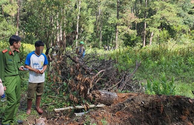 Bắt, triệu tập 8 đối tượng trong vụ tàn phá rừng phòng hộ ảnh 3