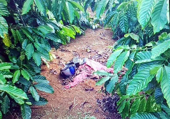 Tử hình kẻ giết 'người tình' trong vườn cà phê, cướp tài sản ảnh 1