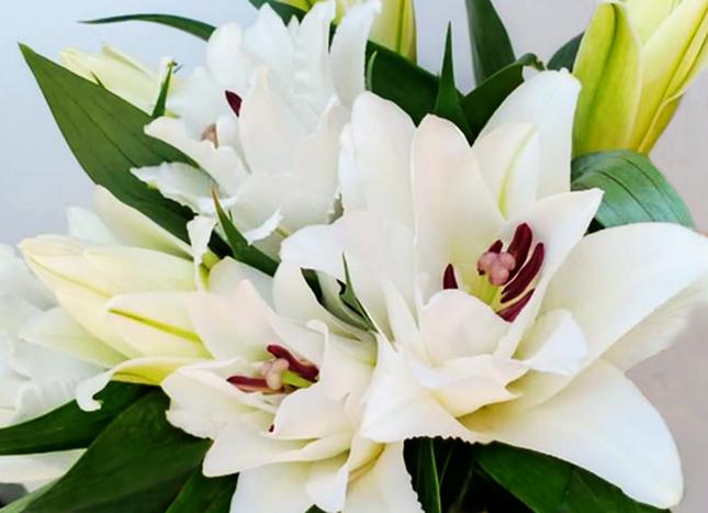 Đà Lạt tung ra thị trường nhiều giống hoa độc, lạ dịp Tết Nguyên đán ảnh 3