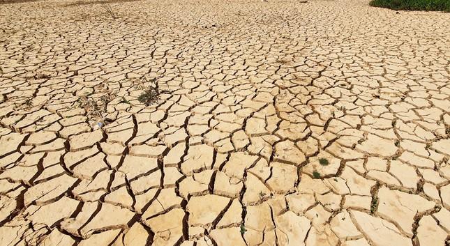 Hạn khốc liệt, hồ chứa nước sinh hoạt thành phố Đà Lạt trơ đáy ảnh 1