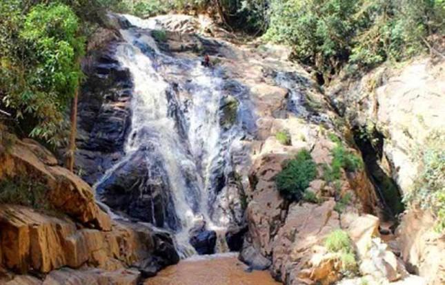 Lâm Đồng cho đấu giá thuê rừng để làm du lịch sinh thái ảnh 1