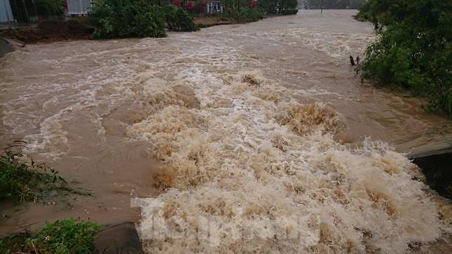 Hậu bão số 6: Người Đắk Lắk 'buốt ruột' khi tài sản, hoa màu mất trắng ảnh 9