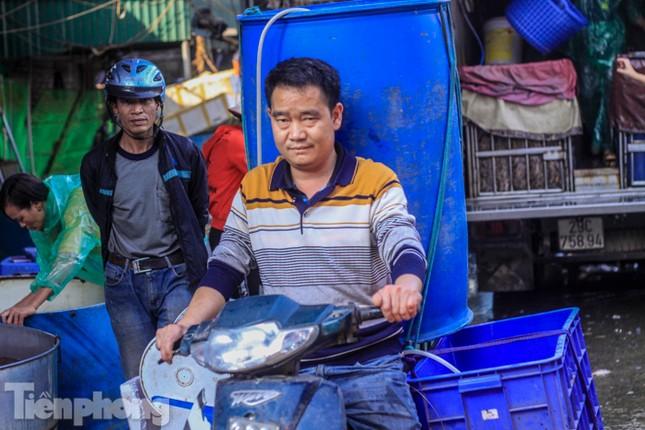Chợ cá lớn nhất Hà Nội tất bật trước ngày ông Công ông Táo ảnh 7