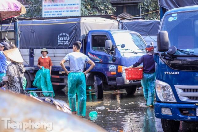Chợ cá lớn nhất Hà Nội tất bật trước ngày ông Công ông Táo ảnh 8