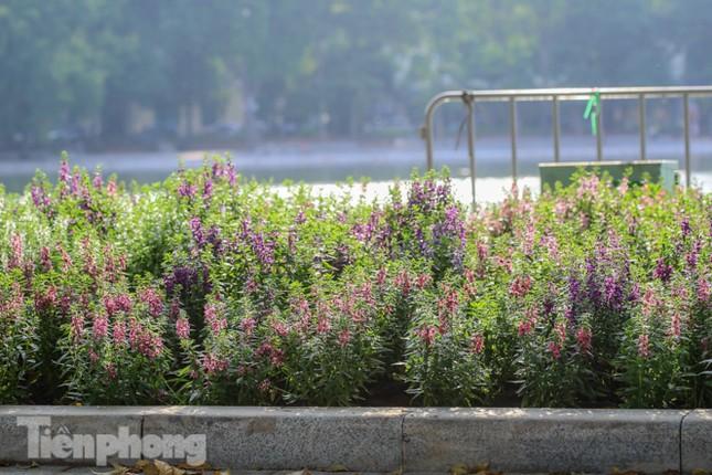 Diện mạo Hồ Gươm thay đổi ra sao trước ngày 'về đích'? ảnh 17