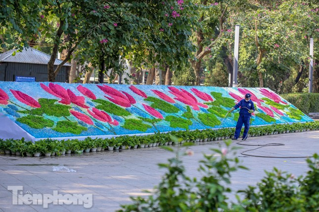 Hà Nội rực rỡ hoa chào mừng Đại hội Đảng lần thứ XIII ảnh 12