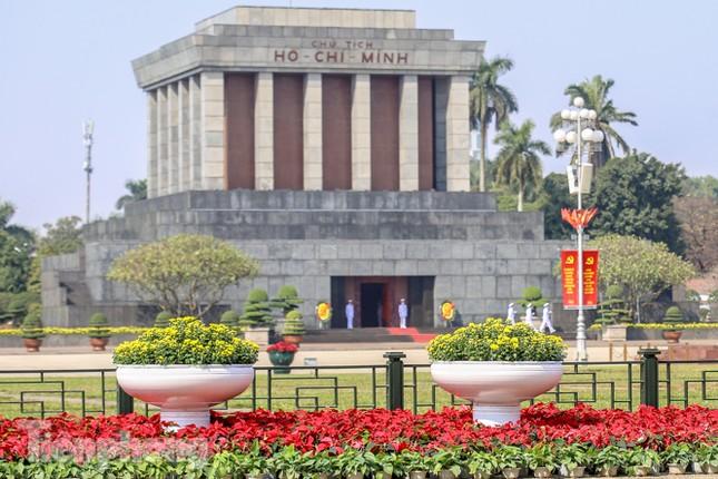 Hà Nội rực rỡ hoa chào mừng Đại hội Đảng lần thứ XIII ảnh 16
