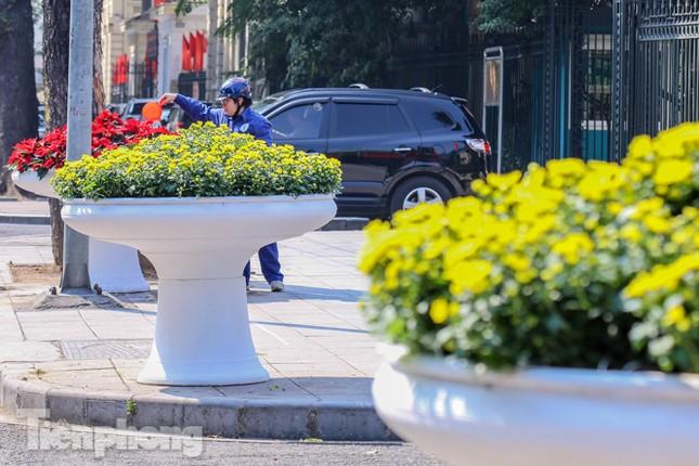 Hà Nội rực rỡ hoa chào mừng Đại hội Đảng lần thứ XIII ảnh 17