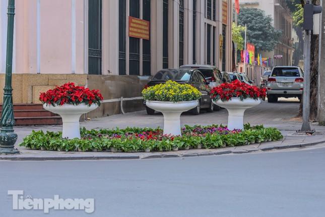 Hà Nội rực rỡ hoa chào mừng Đại hội Đảng lần thứ XIII ảnh 19