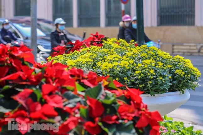 Hà Nội rực rỡ hoa chào mừng Đại hội Đảng lần thứ XIII ảnh 18