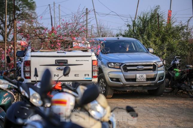 Đào bung nở, làng Nhật Tân nghẽn lối vào ngày cận Tết ảnh 10