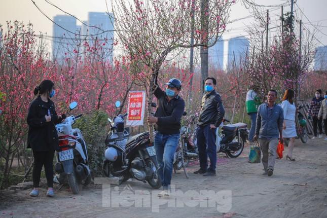 Đào bung nở, làng Nhật Tân nghẽn lối vào ngày cận Tết ảnh 15