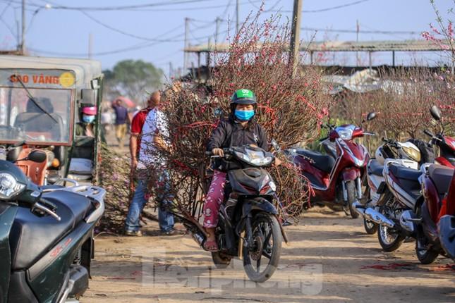 Đào bung nở, làng Nhật Tân nghẽn lối vào ngày cận Tết ảnh 5