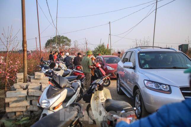 Đào bung nở, làng Nhật Tân nghẽn lối vào ngày cận Tết ảnh 8